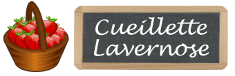 Cueillette Lavernose
